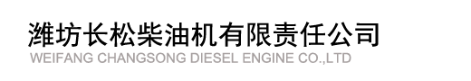 Weifang Changsong Diesel Engine Co.,LTD.